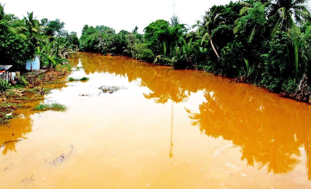 Ảnh hưởng của nước nhiễm phèn và những phương pháp xử lý