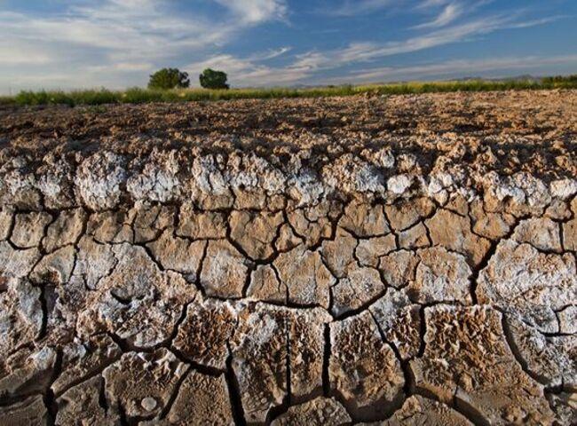 thực trạng Nước mặn xâm nhập