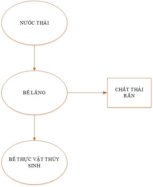 quy trình xử lý nước thải sinh hoạt bằng cây thủy trúc