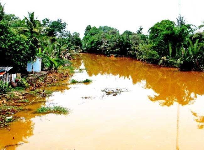 Tác hại của việc ăn uống nước nhiễm phèn