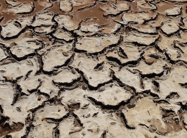 Cách khắc phục nước nhiễm mặn trong nông nghiệp